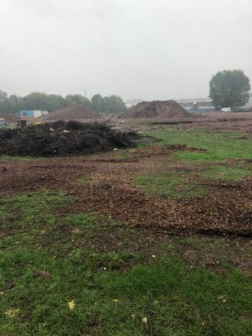 Excavation begins
